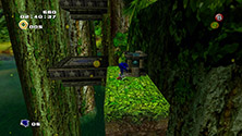 Green Forest Lost Chao Location