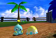 Chao sitting next to an Eggshell