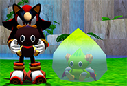 Chao Life-Cycle